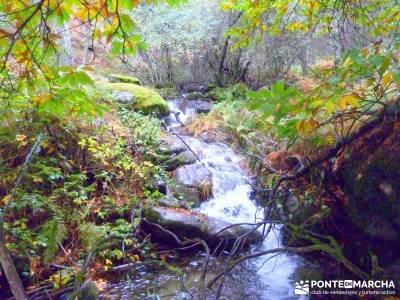 Reserva Natural del Valle de Iruelas;rutas en madrid sierra oeste de madrid cabrera madrid